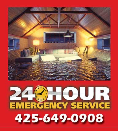 emergency water damage services crystal carpet cleaning john surdi seattle bellevue area eastside washington wa